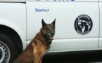 Police de Namur : la Brigade Canine a 10 ans